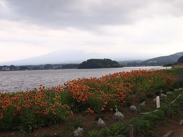 073河口湖