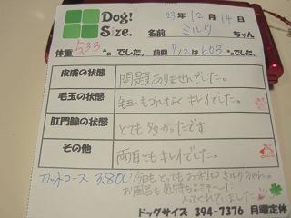 IMG_5899 編集
