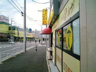 カレーハウスインドのとなり緑店ポテトフライカレー007