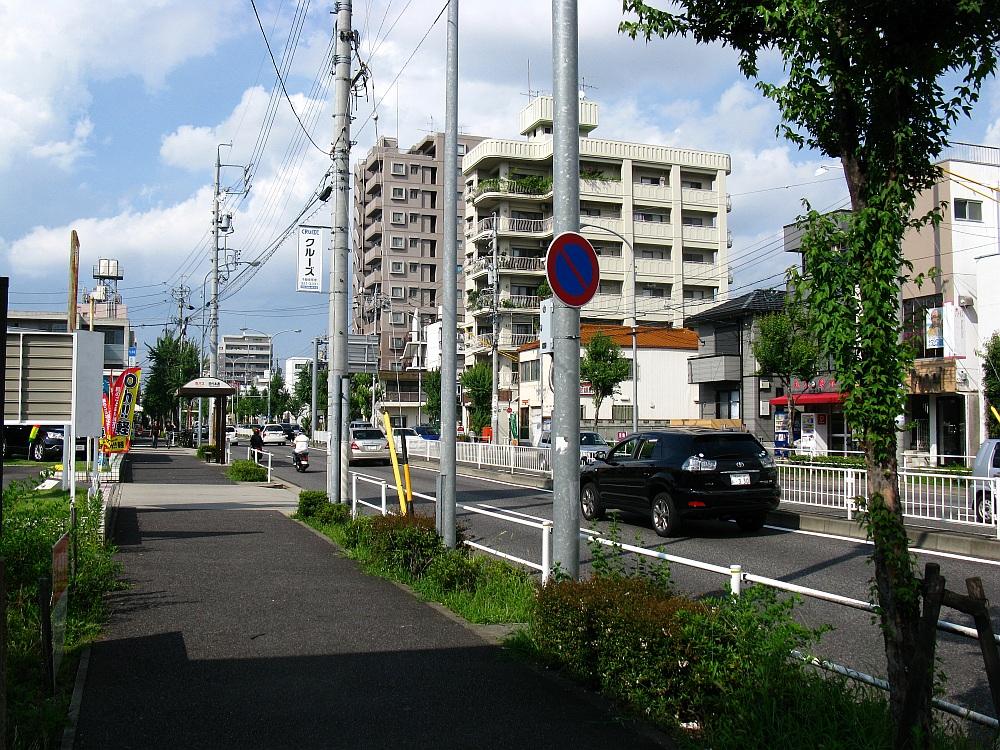 2011-07-30 045