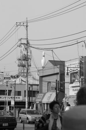 nakayama_071014-2