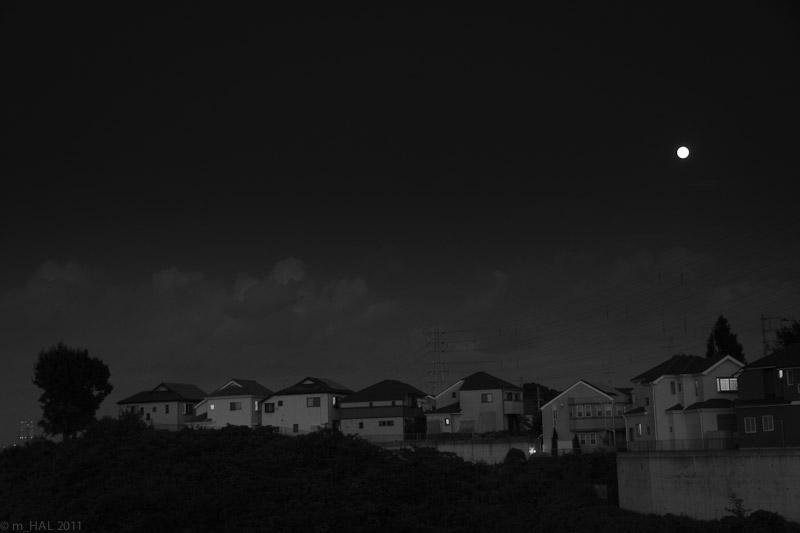 light_110911-1.jpg
