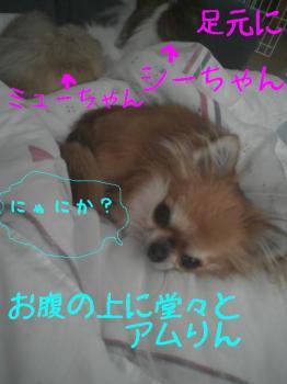 200710172.jpg