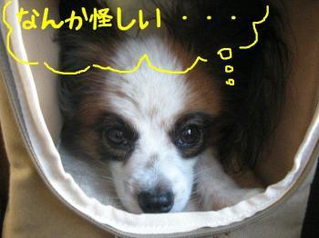 200711143.jpg