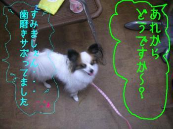 200711144.jpg