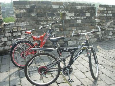 城壁サイクリング3