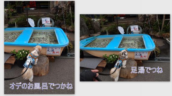 2011-05-0415_convert_20110521192854.jpg