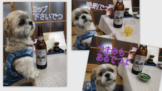 2011-05-0419_convert_20110521193034.jpg