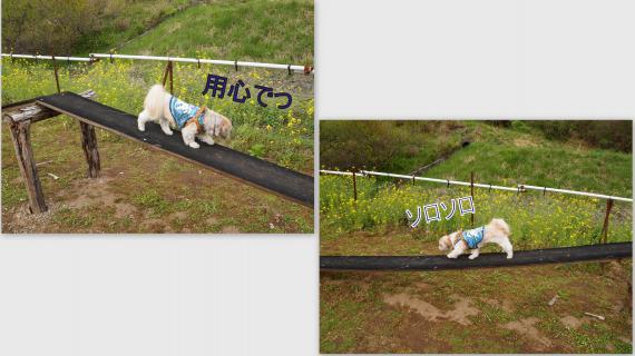 2011-05-0420_convert_20110521193053.jpg