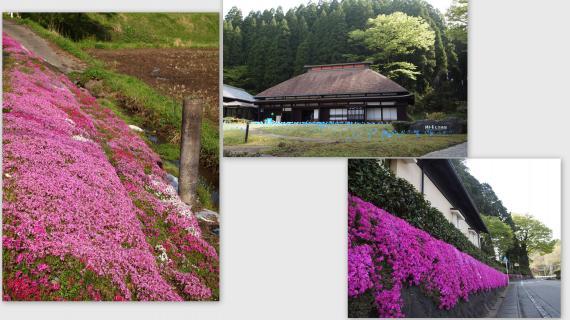 2011-05-043_convert_20110515001422.jpg