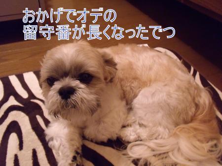 ・搾シ僖SCF8090_convert_20110517015529