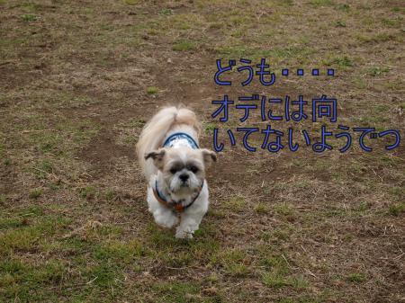 ・搾シ鳳5043675_convert_20110521194455