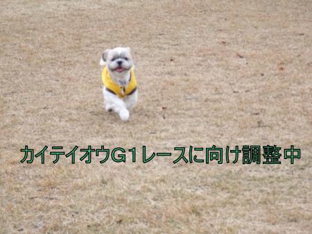 繝・ず繧ォ繝。+813_convert_20110528002353