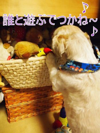 ・搾シ姫5274314_convert_20110528024924
