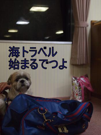 ・搾シ姫5183852_convert_20110530122717