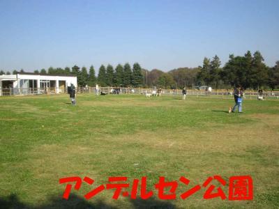 2007.11.26.2.jpg