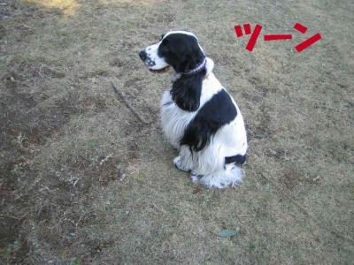 2007.11.26.8.jpg