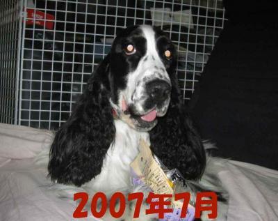 2008-1-20-1.jpg