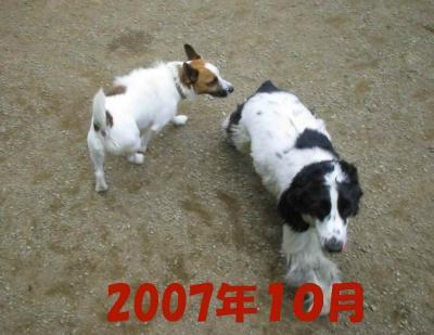 2008-1-25-3-10-7.jpg