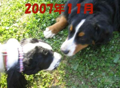 2008-1-25-4-11-24.jpg