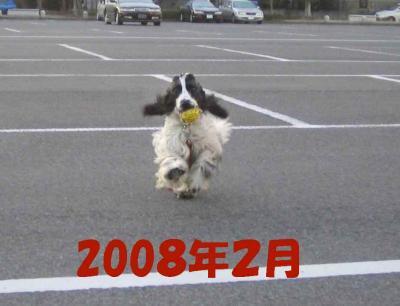 2008-1-25-6-2-7.jpg