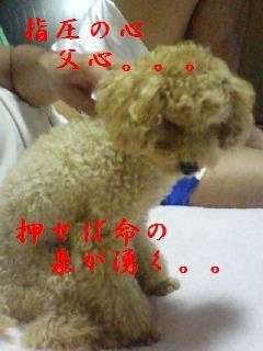 20070913232507.jpg