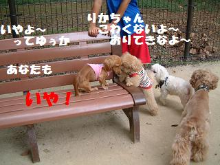 DSCF2014文字入り