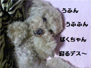 うふん ぶり犬