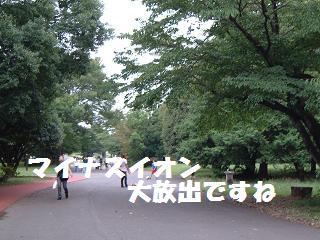DSCF20345.jpg