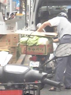 箱の中には白菜が大量に(笑)