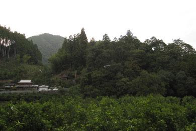 kawamata-10.jpg