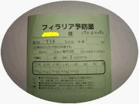 IMGP9638-e.jpg