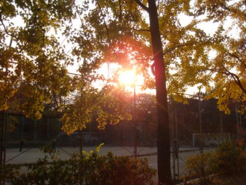 20071202-公園(夕暮れ)?