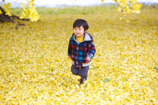 弘前 子ども 記念 写真 撮影 成長記録 年賀状 キッズロケーション