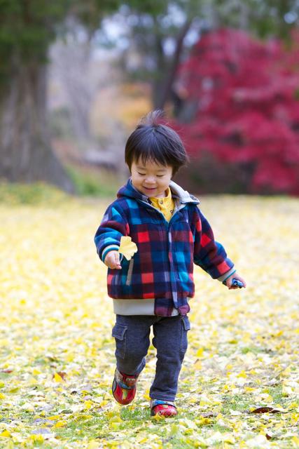 弘前 記念 写真 撮影 子ども 成長記録 年賀状 キッズロケーション