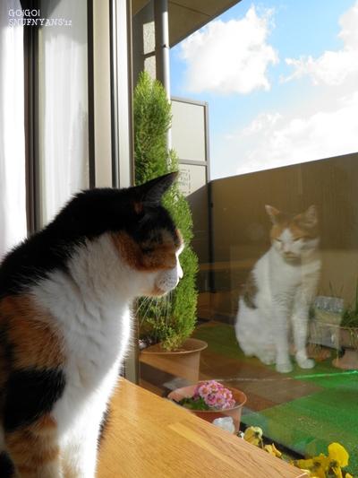 窓の外をみているレイコさんがいる