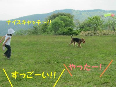 IMG_1197_sh01.jpg