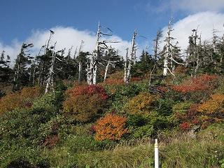 八幡平山頂付近