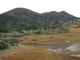 田茂萢湿原