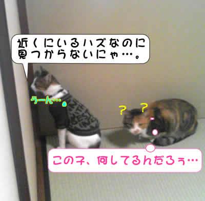 PAP_0087.jpg