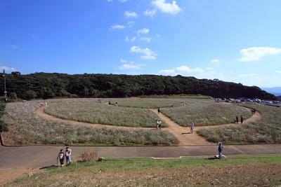 20091018_Ten012.jpg
