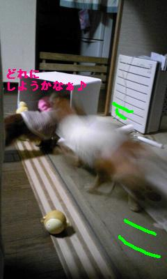 Image683.jpg