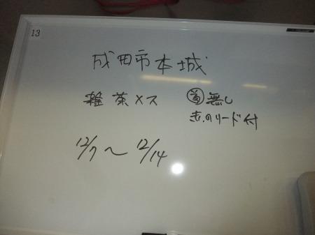 2011_1208_18.jpg