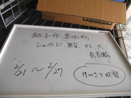 2012_0222_10.jpg