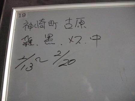 2012_0222_26.jpg