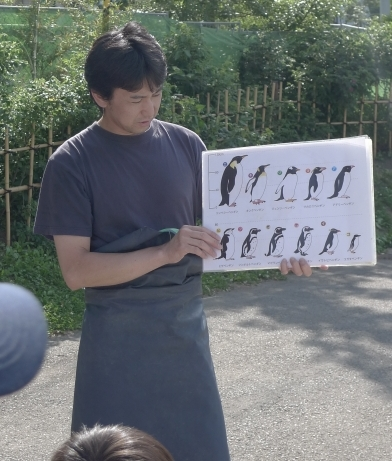 maruyamayokaisetsu.jpg
