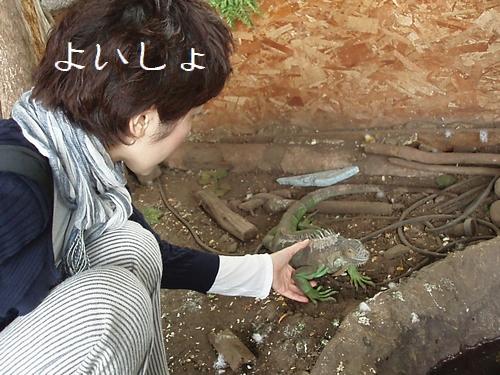 yoisyo_20090922095639.jpg