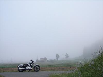 7:26霧