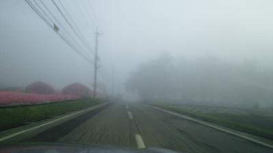 26霧の八ヶ岳エコーライン