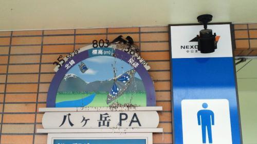 3八ヶ岳P